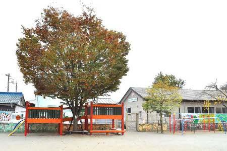 酒田保育園 庭の木