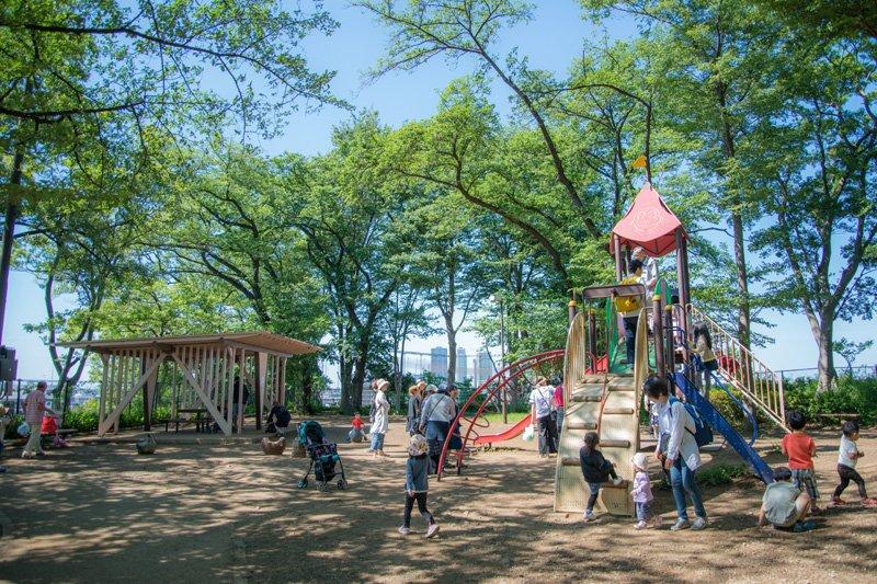 園内には遊具がある広場も