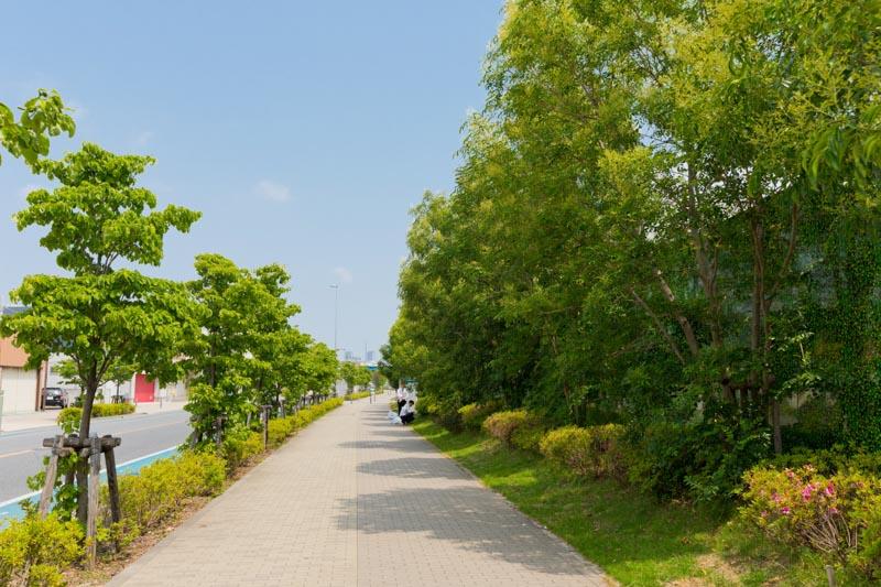 『クレストプライムレジデンス』前の整備された歩道