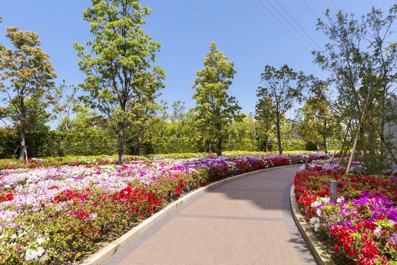 美しい花や緑があふれる敷地内
