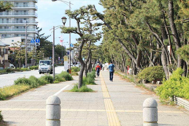 散歩・散策したくなる平塚の街並み