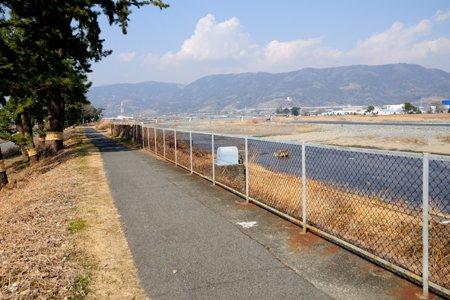 酒匂川サイクリングコース(開成駅付近)