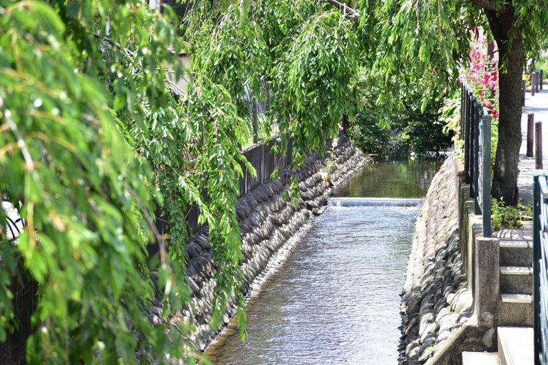 二ヶ領用水(大石橋付近)